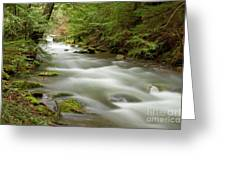 Velvet Stream Greeting Card
