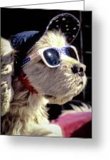 Venice Beach Dog Greeting Card