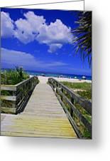Venice Pier Venice Florida Greeting Card