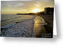 Ventura Gold Greeting Card