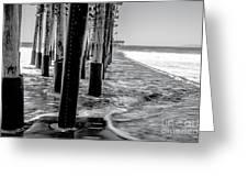 Ventura Pier Bxw Greeting Card