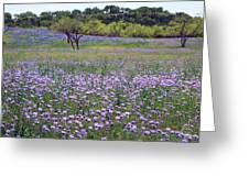 Verbena And Blue Bonnet Landscape Greeting Card