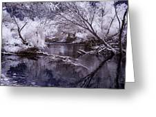 Verde Spring Reflections Greeting Card