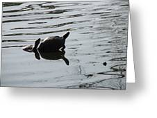 Vereen Turtles Greeting Card