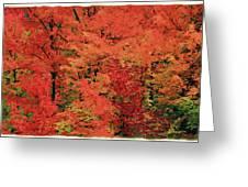 Vermont Autumn Greeting Card