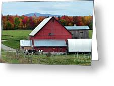 Vermont Cows At The Barn Greeting Card