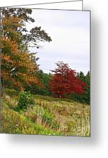 Vermont Roadside Color Greeting Card