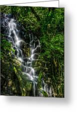 Vernal Fall At Rincon De La Veija Greeting Card
