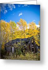 Vertical Shot Of Meagher's Cabin Greeting Card
