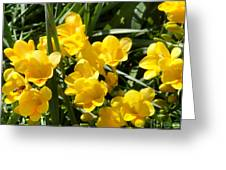 Very Sunny Yellow Flowers Greeting Card
