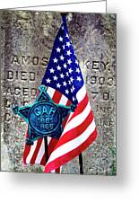 Veteran - 298 Greeting Card