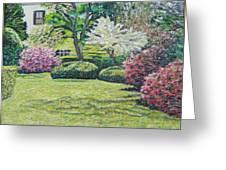 Veterans Park Blossoms Greeting Card