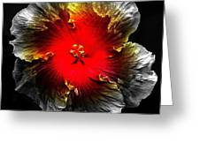 Vibrant Flower Series Greeting Card by Jen White