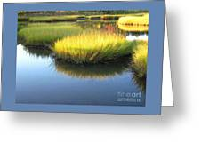 Vibrant Marsh Grasses Greeting Card