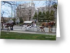 Victoria Horse Carriages Greeting Card