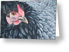 Victoria, Lavender Cochin Chicken Greeting Card