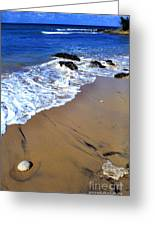 Vieques Greeting Card