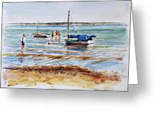View Across Provincetown Harbor Greeting Card