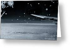 The View From Airplane Bw Greeting Card