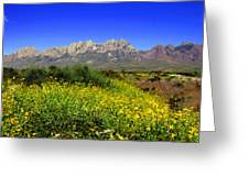 View From Dripping Springs Rd Greeting Card