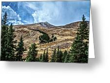 View From Guanella Pass Road Greeting Card