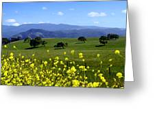 View From Highway 154 Greeting Card