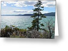 View From Incline Village Greeting Card