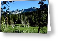 View From Lake Mary Greeting Card