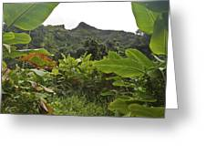 View From Likeke Greeting Card
