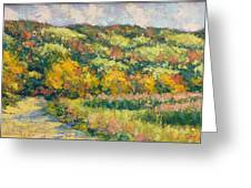 View From Pine Plains Greeting Card