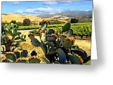 View From Santa Rosa Road Greeting Card