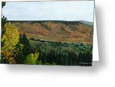 View From Shinning Bank  Greeting Card