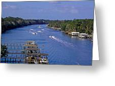 View From The Bridge Of Lions Greeting Card