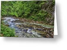 View In Vintgar Gorge - Slovenia Greeting Card