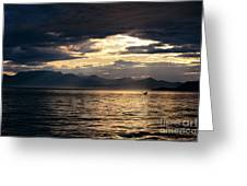 View Of Alaska Greeting Card