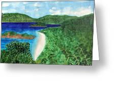 View Of Beach In St John Us Virgin Islands  Greeting Card