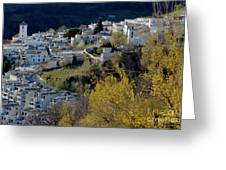 View Of Capileira Village In The Alpujarras Mountains In Andalusia Greeting Card