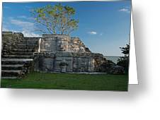 View Of Cerros Maya Ruins At Cerros Greeting Card