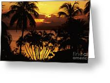 View Of Fiji Greeting Card