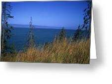 View Of Kachemak Bay, Alaska Greeting Card