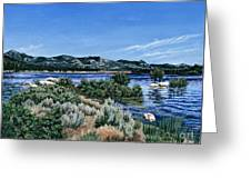 View Of Lake Hemet Greeting Card