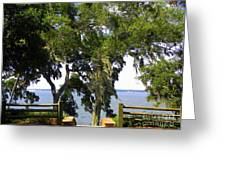 View Of Old Tampa Bay Greeting Card
