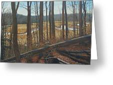 View Of Parkers Creek Greeting Card