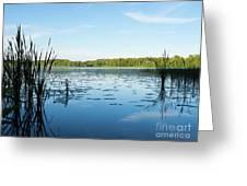 View Of The Lake Enajarvi Greeting Card