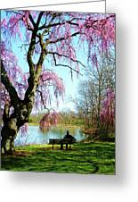 View Of The Lake In Spring Greeting Card