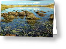 View Of The Marsh Greeting Card