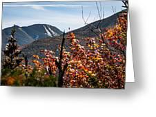 View On The Way Up Mt. Jo, Adirondacks Greeting Card