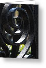 View Through The Iron Fence Greeting Card
