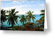 View To The 7 Mile Bridge Greeting Card