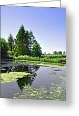 Village Pond At Tissington Greeting Card